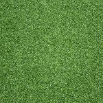 Sports Grass Green